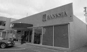 banksia5